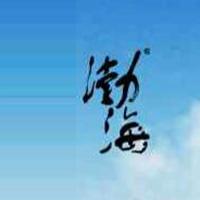山东渤海实业股份有限公司